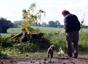 gaeslinger-paa-tur-med-gonzo-og-johnny-2015-06-08-1